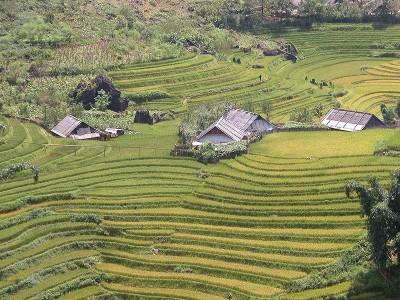 randonnée au Vietnam