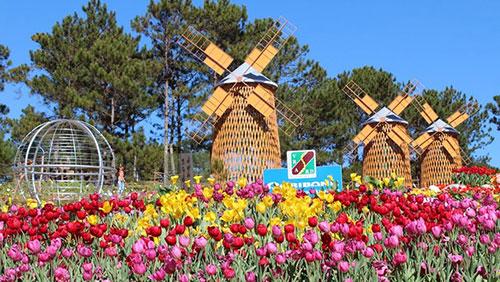 festival fleurs